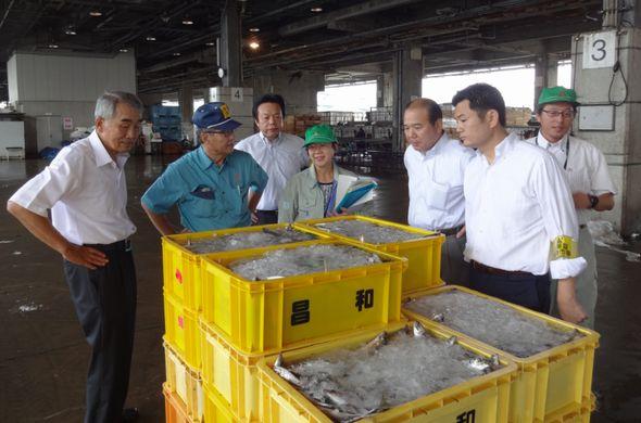 福岡市魚市場を視察