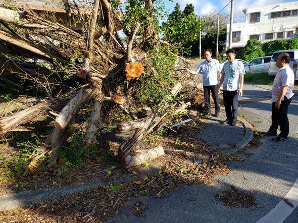 宮古島の台風被害を視察